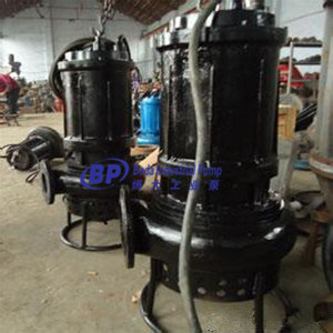 Zqsubmersible Slurry Pump pictures & photos