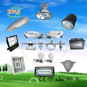 LVD Induction Lamp Factory