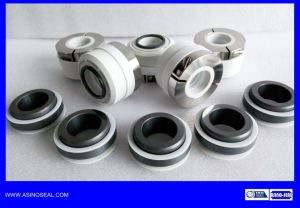 PTFE Bellow Seal as-Ewb2 Replace Johncrane Wb2 Seal