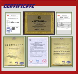 11r22.5 Best and Durable Quality Tubeless Tyre with All Certificate pictures & photos