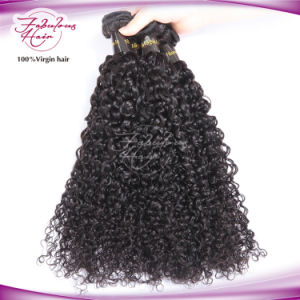 8A Wholesale Human Hair Mongolian Curly Virgin Hair pictures & photos