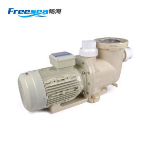 2.5inch Port Size 4kw Swimming Pool Water Pump Filter Machine pictures & photos