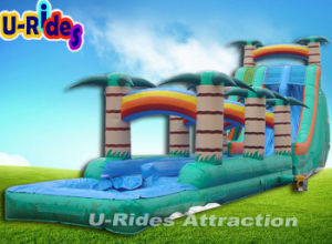 14ml Cliffhanger Inflatable Water Slide For Water Park pictures & photos
