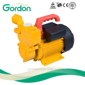 Domestic Electric Copper Wire Self-Priming Booster Pump with Water Valve pictures & photos