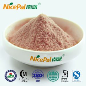 Fresh Watermelon Plant Extract Watermelon Fruit Juice Powder From China Factory pictures & photos