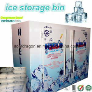 Outdoor Using Upright Ice Merchandiser pictures & photos