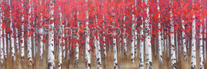 100% Handmade Oil Painting Wall Art for Silver Birch pictures & photos