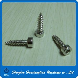 Nickel Plated Hex Socket Cap Head Self Tapping Wood Screws pictures & photos