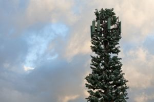 Bionic Telecommunication Camouflaged Tower pictures & photos