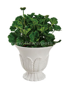 Plastic Cup Shape Flower Pot (KD2931) pictures & photos