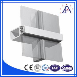 Asiaalum Co., Ltd Curtain Wall/Aluminum Profile pictures & photos