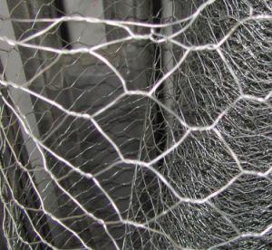 Chicken Wire Mesh/Poultry Wire/Galvanized Hexagonal Wire Mesh pictures & photos