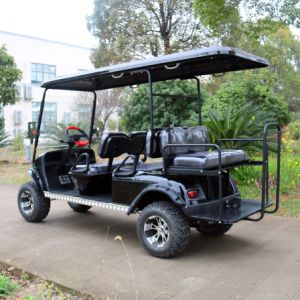 Customized 6 Passenger Electric Vehicles (Rear back seats can be fold up) pictures & photos