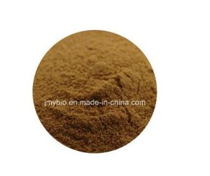 Factory Direct Supply Mulberry Leaf Extract 1-Deoxynojirimycin 1% to 30% pictures & photos
