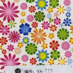 Tsautop 0.5/1m Width Flower Hydrographics Water Transfer Film pictures & photos