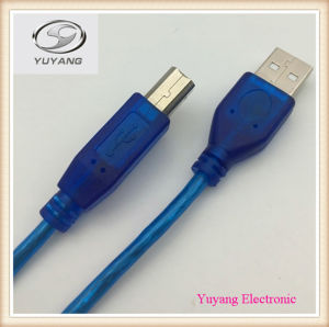 USB Cable, RCA Cable, AV Cable, USB Type Cable a Plug to USB B Plug pictures & photos