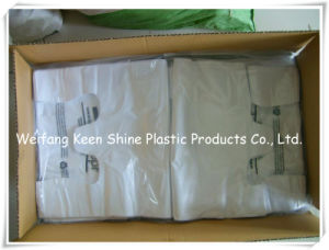 Custom Quality LDPE Plastic Zip Lock Bag with Nature Color Zipper pictures & photos