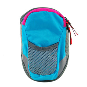 Beautiful Multi-Color Sports Running Jogging Pouch Bags for Phone pictures & photos