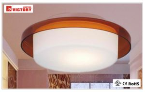 Indoor Lighting LED Modern Residential Surface Mount Ceiling Light Lamp pictures & photos