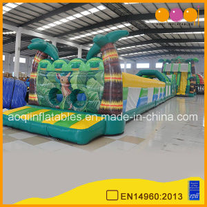 Inflatable Tropical Grand Combination Game (AQ01698) pictures & photos