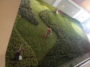 New Design Artificial Green Wall pictures & photos