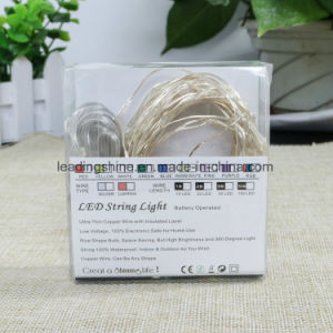 USB Powered 100 LEDs 33FT Slimmer Rope Light Flexible Silver Wire Waterproof Great for Outdoor Decor pictures & photos