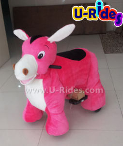 Donkey Walking animal car ride for kids pictures & photos