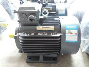 Reliance 220V/230V/240V/400V/415V 3 Phase Electric Motors pictures & photos