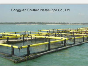 HDPE/PE Floating Cage, HDPE Deep Water Cage, HDPE Floating Pipe pictures & photos