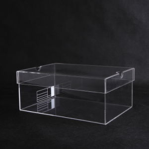 Acrylic Material Showcase Clear Acrylic Shoe Box pictures & photos
