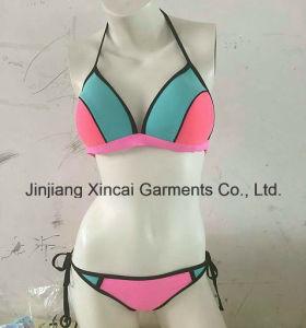 80%Nylon 20%Spandex 190 GSM Panel Sexy Bikini pictures & photos
