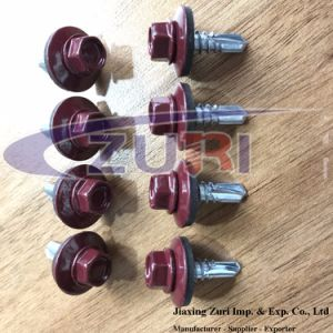 Roofing Screw 5.5X19 Ral 3005 pictures & photos