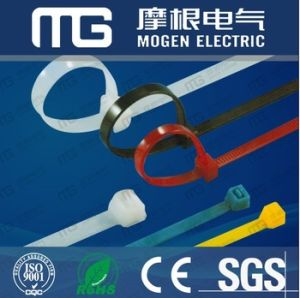 Nylon 66 Fixed Cable Tie with Euro Hole pictures & photos