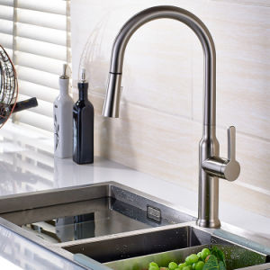 FLG Nickel Brushed Kitchen Sink Faucet with Pull out Function pictures & photos