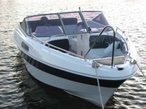 Leisure Boat (VMC NS535) pictures & photos