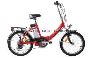 Electric Bicycle/Bike (TDN20Z001)