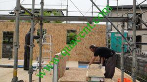 Japan Sendai Project 2-4 pictures & photos