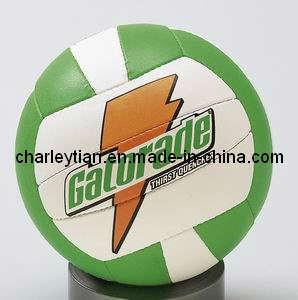 Volleyball (PUHSVB-0001)
