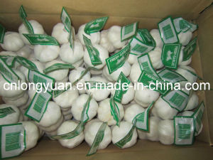 2015 New Crop Small Mesh Bag Packing Garlic pictures & photos