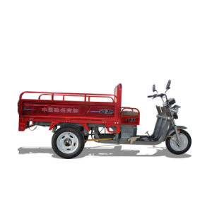 Strong Power Cargo Electric Tricycle