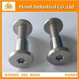 Pan Head Torx Security Binding Post Screw pictures & photos