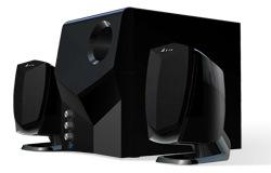 Speaker (DS310)