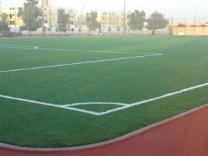 Synthetic Lawn for Football Field (50S16N15G4)