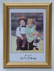 Poster Photo Frame (PS319B)