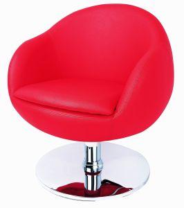Hydraulic Salon Chair (LY6317)