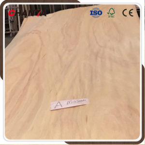 0.50mm Natural Wood Mersawa Veneer for Plywood pictures & photos