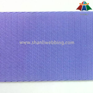 2 Inch Nylon Webbing Purple for Shoulder Straps pictures & photos