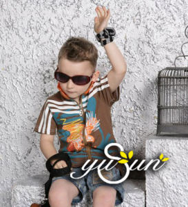 Children′garment / Boy Wear / Boy′s T-Shirt / Boy Suit / Boy Shirt (CH0057) pictures & photos