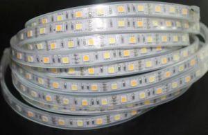 Dual Kelvin Adjustable 3000k to 6500k LED Strip Light pictures & photos