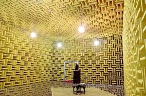 Anechoic Chamber pictures & photos